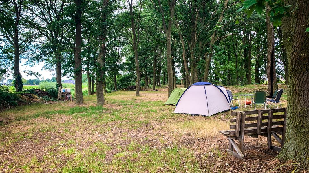 Campscape Karmijn 💛 #2