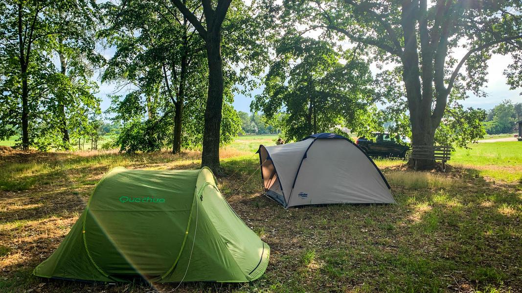 Campspace Karmijn 💚 #6