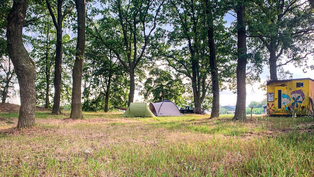 Campspace Karmijn 💚 #9