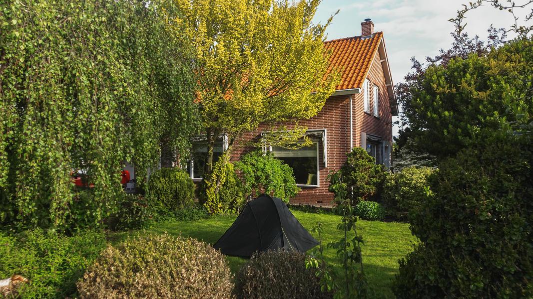 Agnes's nature campsite #4