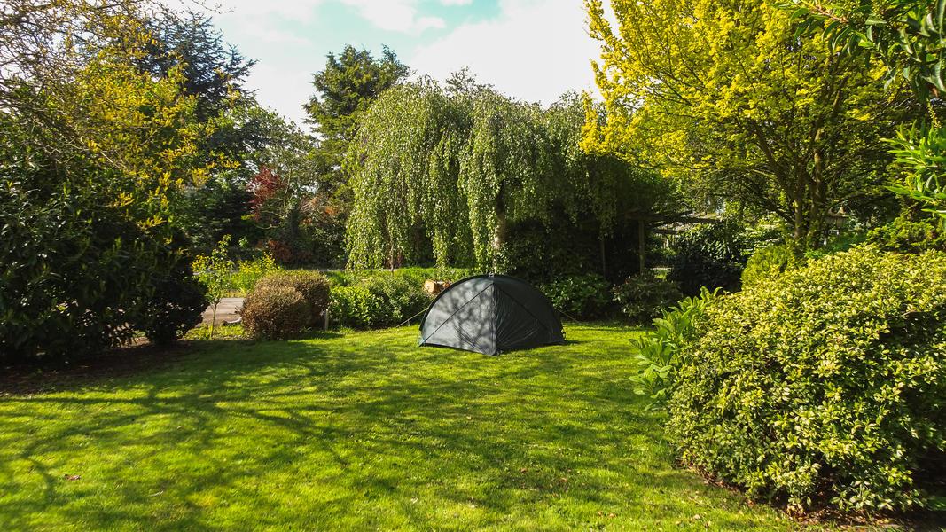 Agnes's nature campsite #8