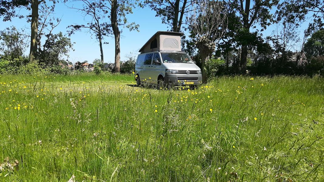 Camper spot on a quiet yard in the polders of Zeeuws-Vlaanderen #4
