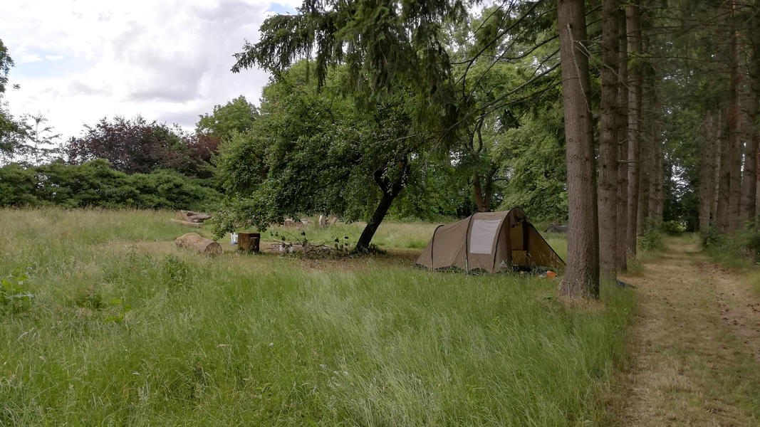 Enjoy unforgettable tranquility in a vast monastery park - Pop Up camping spot #10