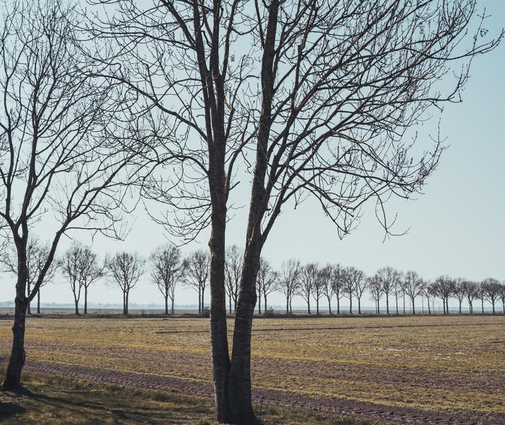 Genießen Sie den Panoramablick, die Ruhe, den Raum und die Natur. #6