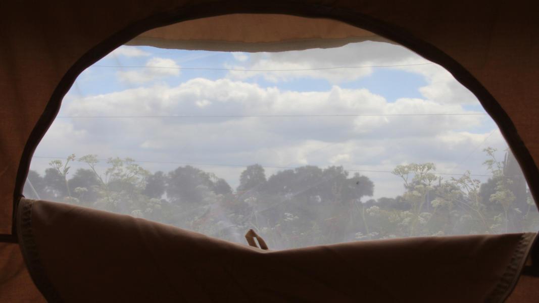 Overnachten in een Sahara tent midden in het weiland tussen de pony's #4