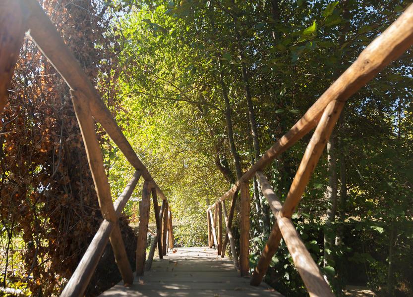 Rodizio Mill - Campspace #5