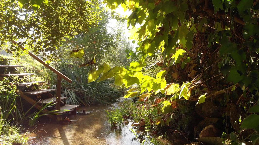 Rodizio Mill - Campspace #7