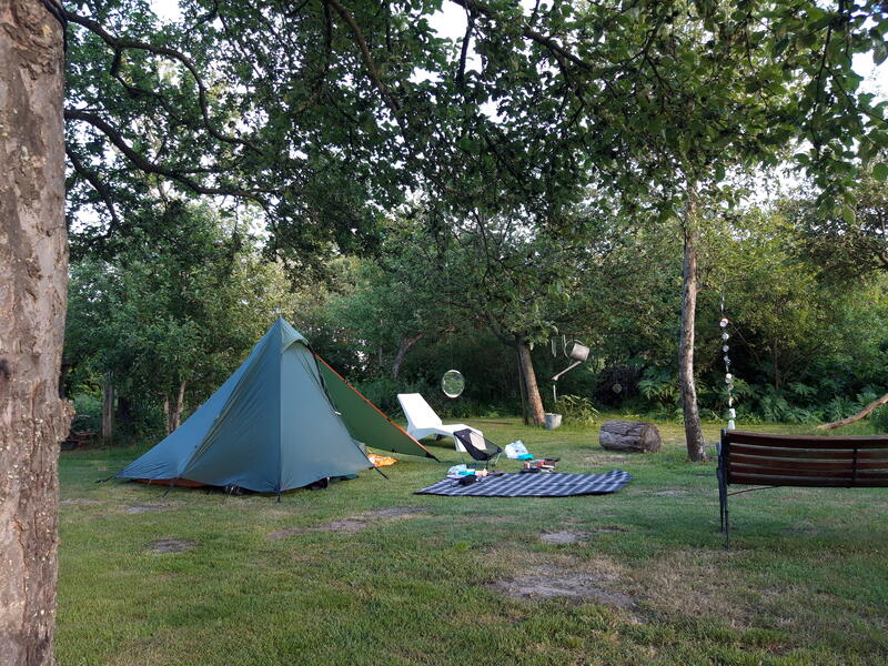Frogs or birds as an alarm clock? Your tent under old oaks or apple trees? #1