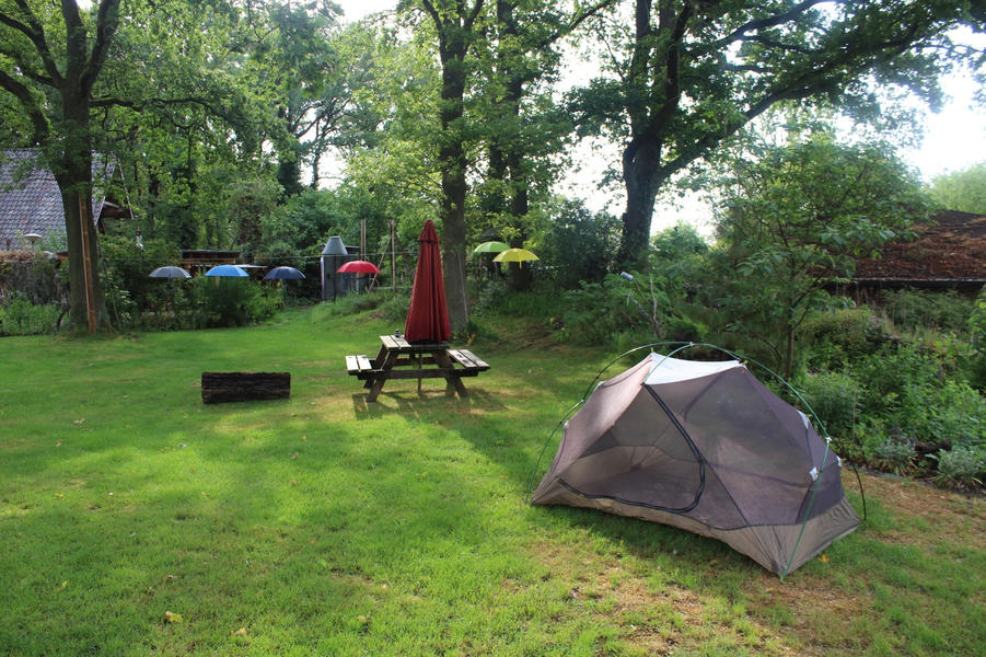 Frogs or birds as an alarm clock? Your tent under old oaks or apple trees? #3