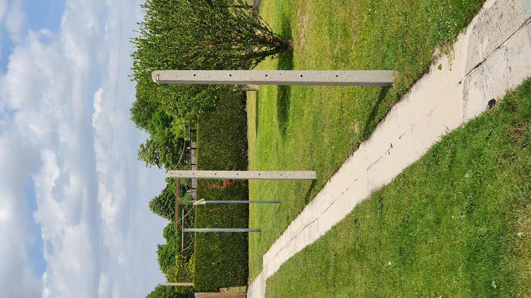Grote achtertuin in Bosland (Belgisch Limburg). #4