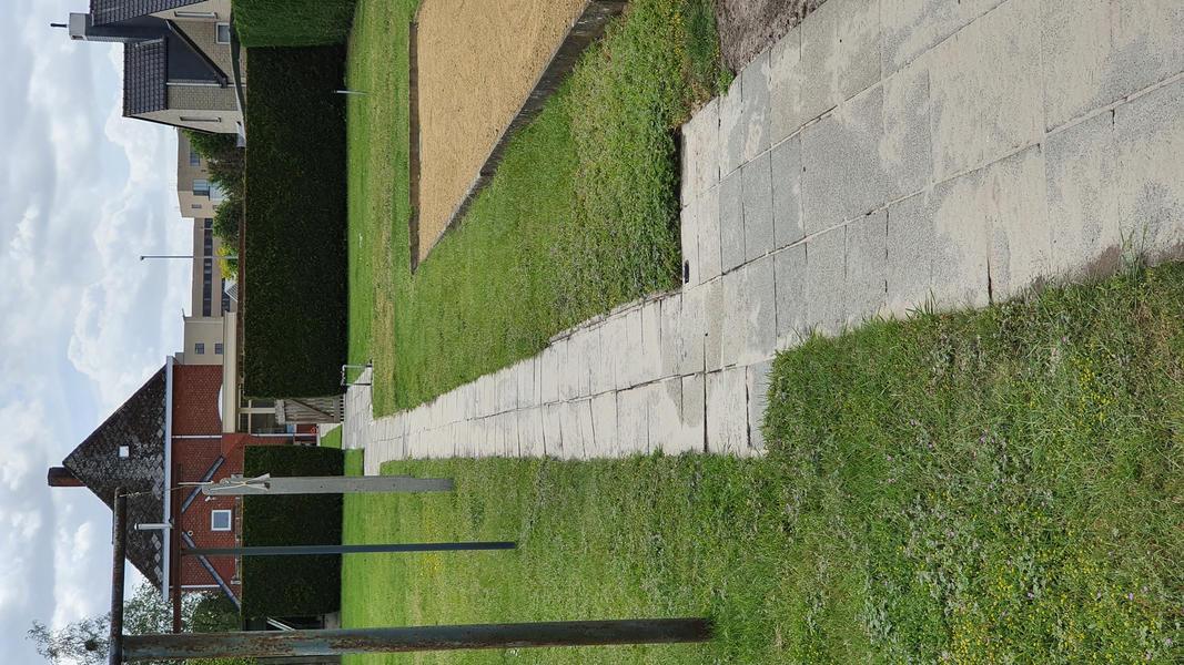 Grote achtertuin in Bosland (Belgisch Limburg). #8