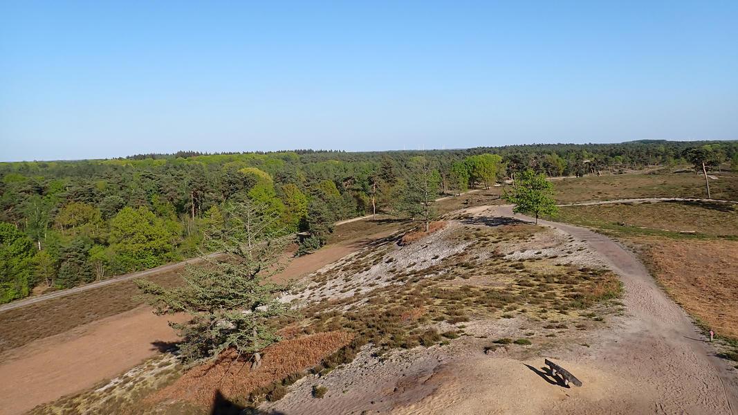 "Spacious place near the national park ""De Maasduinen"" #15"
