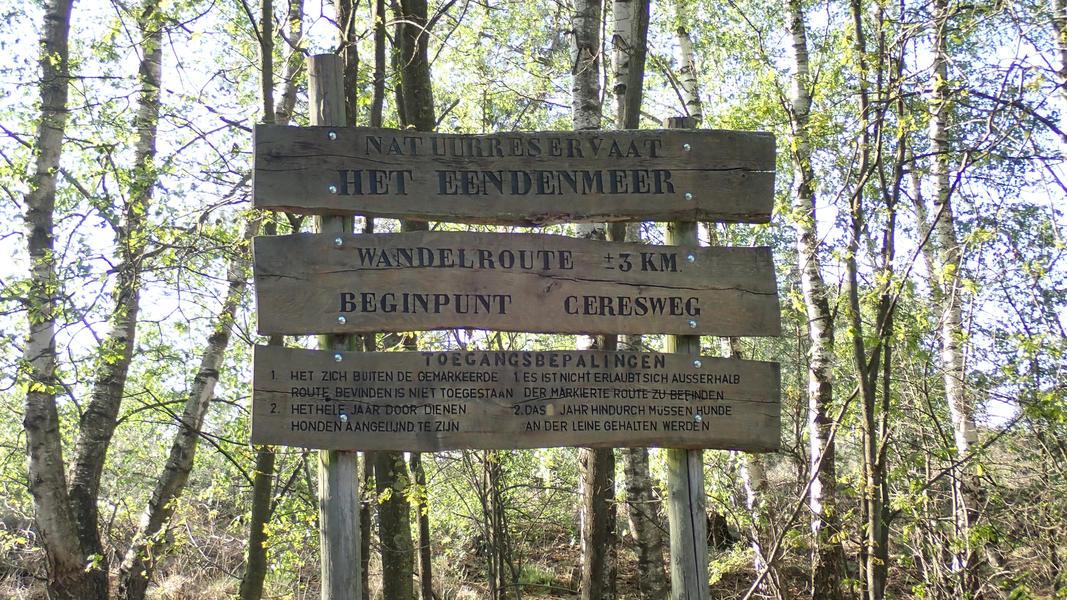"Spacious place near the national park ""De Maasduinen"" #19"