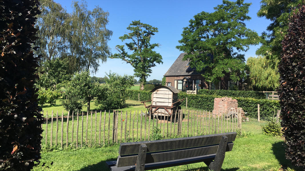 "Spacious place near the national park ""De Maasduinen"" #3"