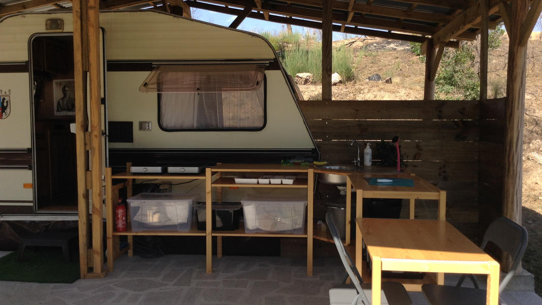 Peaceful caravan with private kitchen on David and Eli's farm in central Portugal #3