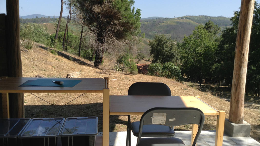 Peaceful caravan with private kitchen on David and Eli's farm in central Portugal #6