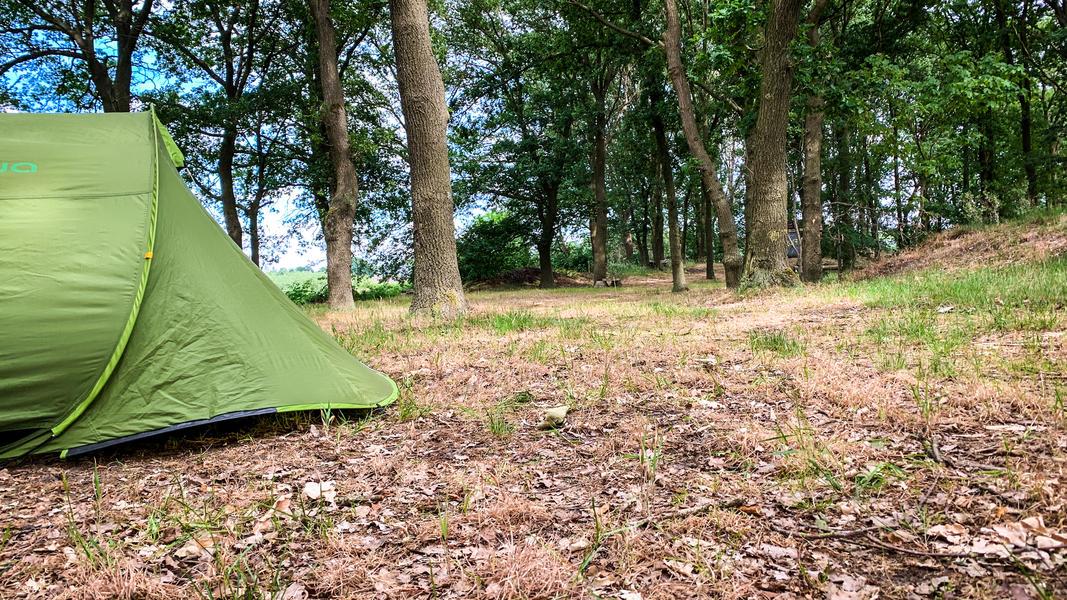 Campspace carmine 💙 #11