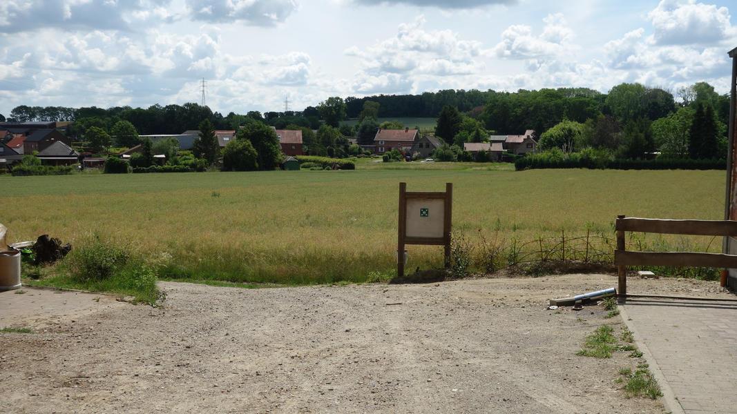 Campspace in Holsbeek #10