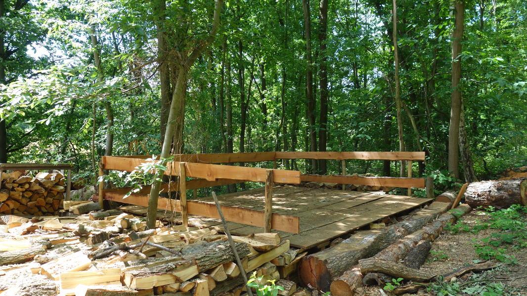 Campspace in Holsbeek #1