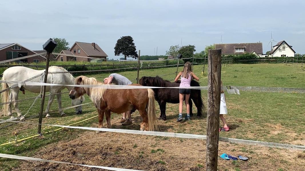 Motorhome campsites the Netherlands #23