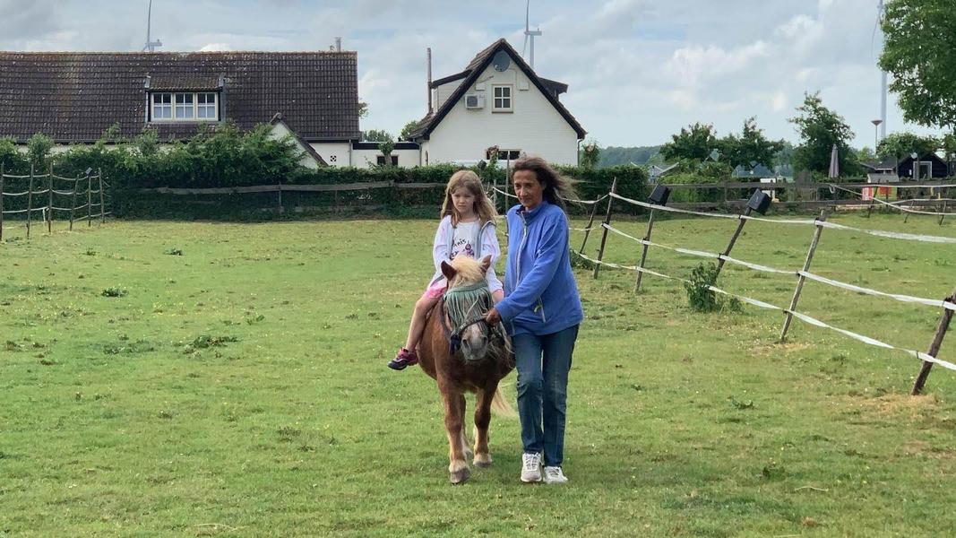 Camping pony #19