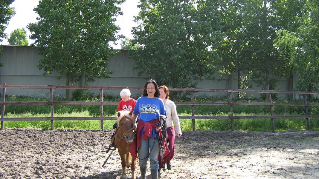 Camping pony #4