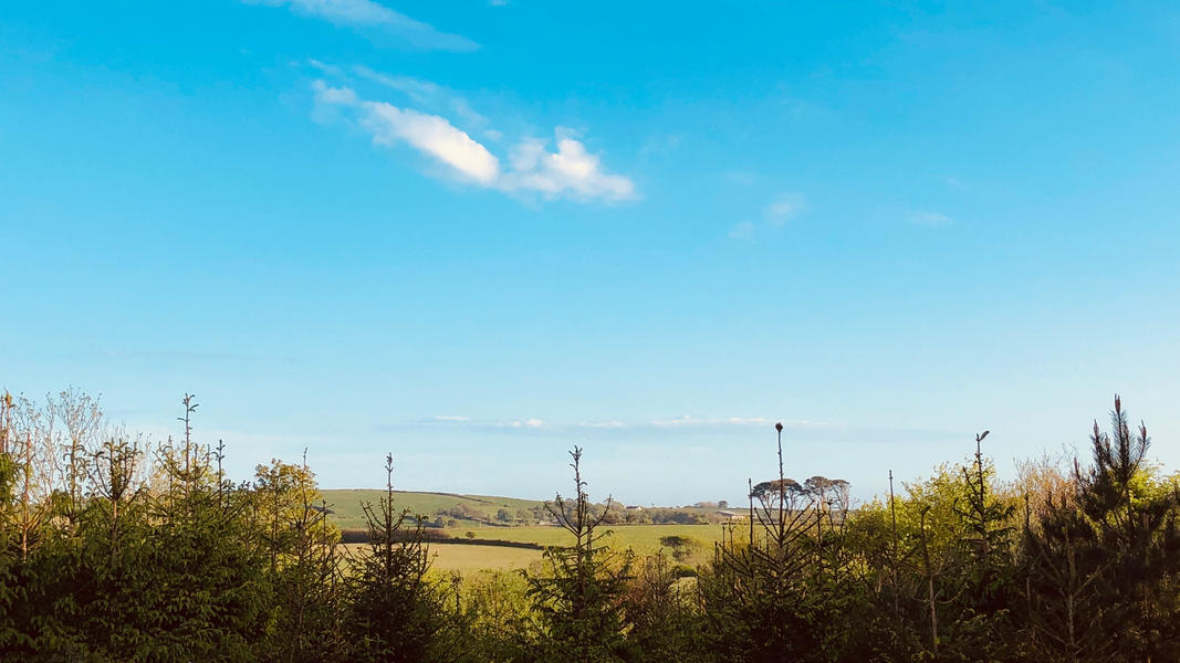 Rural and quiet pinetree haven with stunning views #2