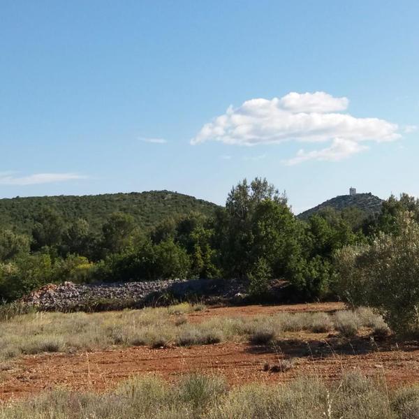Divine Garden Croatia robinson camping near Vodice and Krka national park #3