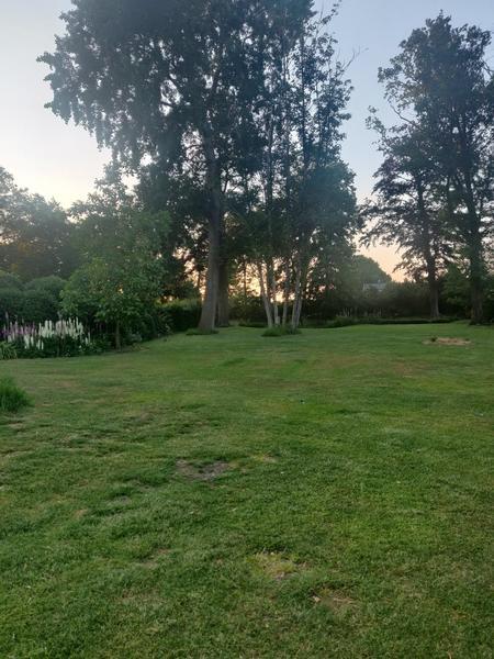 Large idyllic garden with pond #1