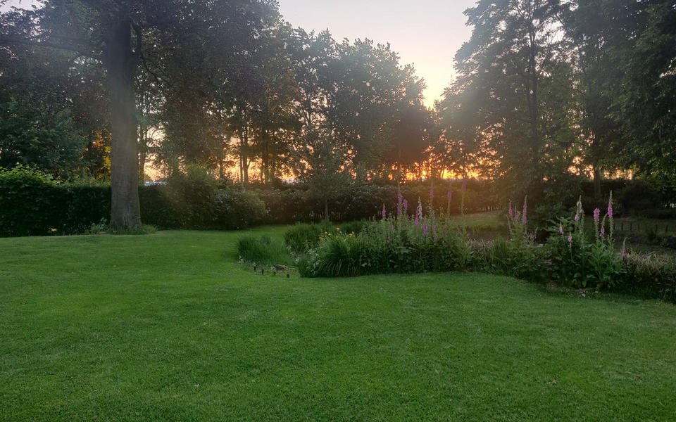 Large idyllic garden with pond #2