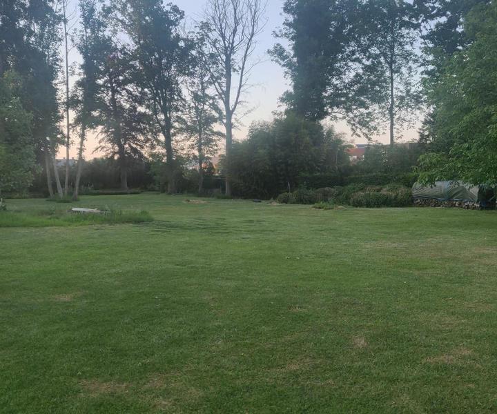 Large idyllic garden with pond #3