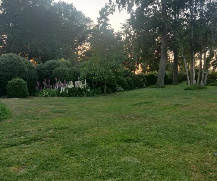 Large idyllic garden with pond #5