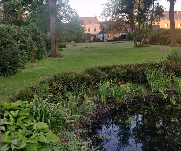 Large idyllic garden with pond #6