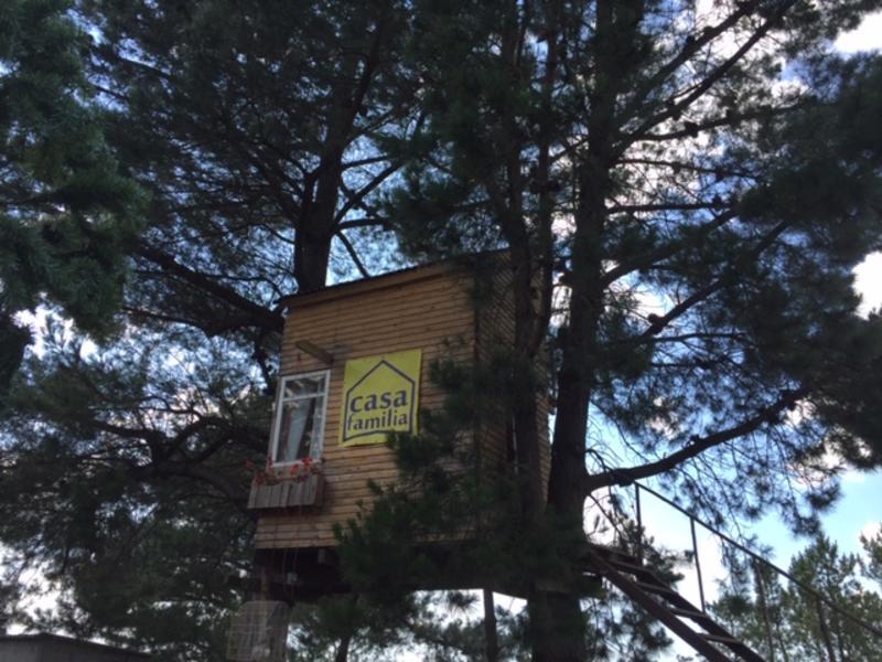 Treehouse on the Camino de Santiago #1