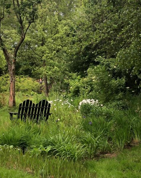 Mijn tuin in de Zoeke #16