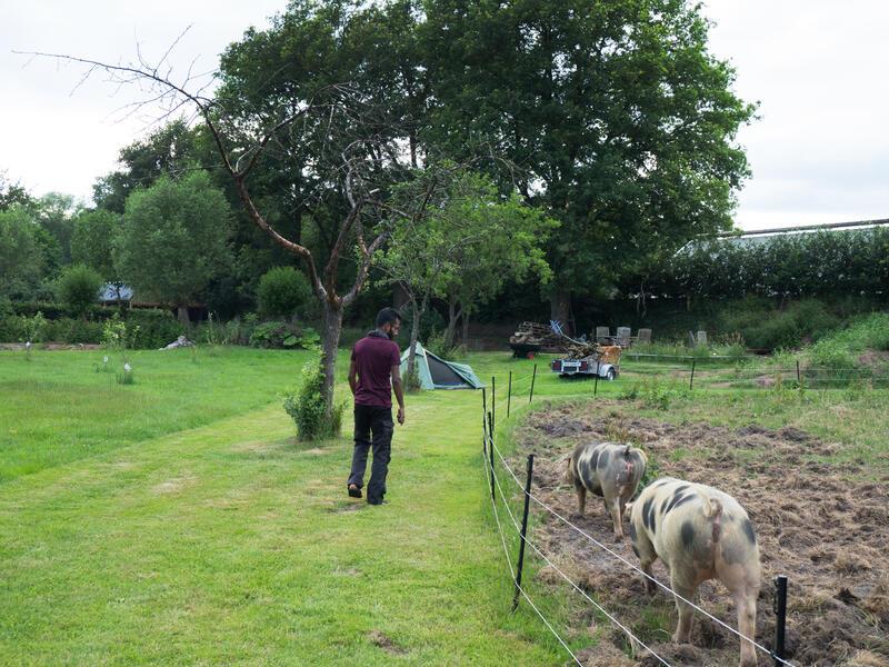 Mijn tuin in de Zoeke #1