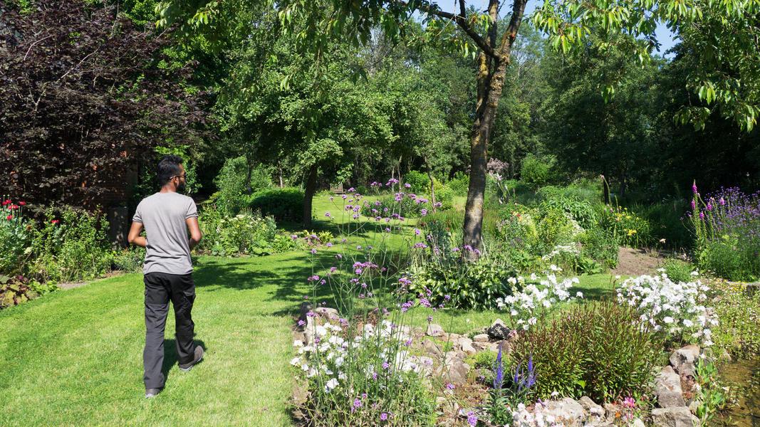 Mijn tuin in de Zoeke #2