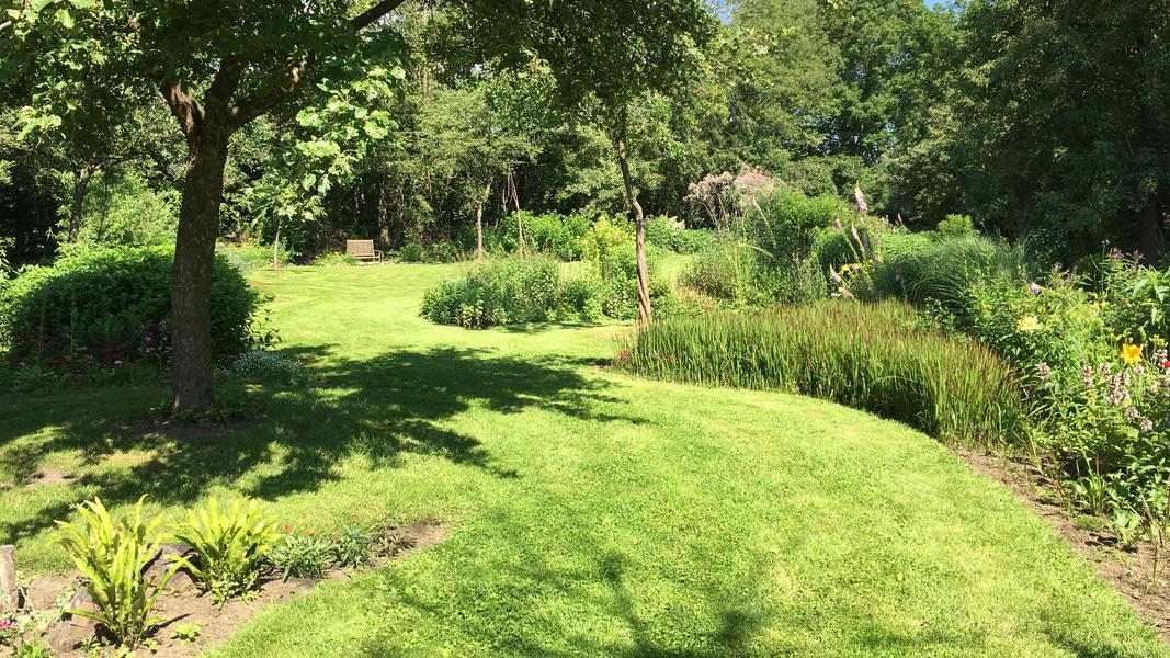 Mijn tuin in de Zoeke #5