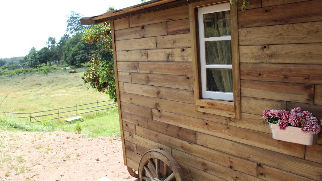Gypsy Wagon - Vale da Silva Villas #18