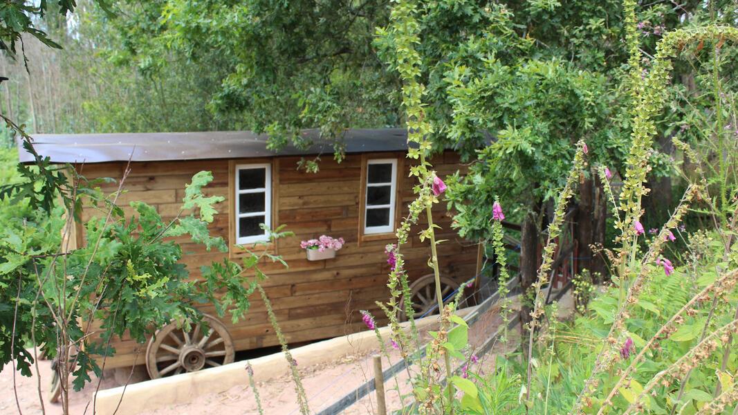 Gypsy Wagon - Vale da Silva Villas #7