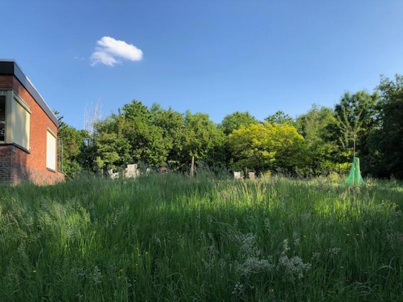 Kamperen in de tuin naast bungalow met een mooi uitzicht ! #3
