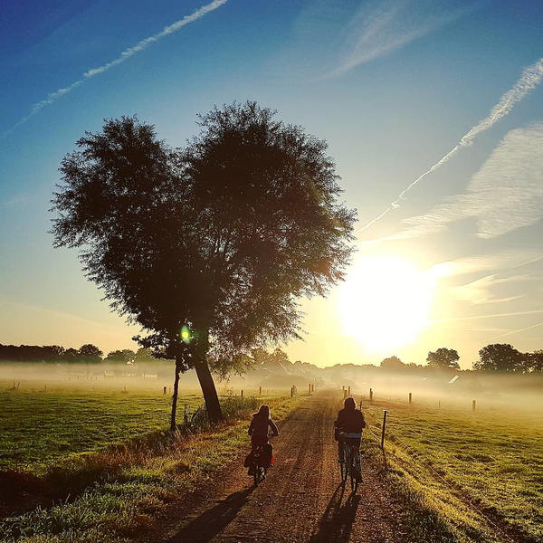 Camping between the meadows and animals in Drenthe #10