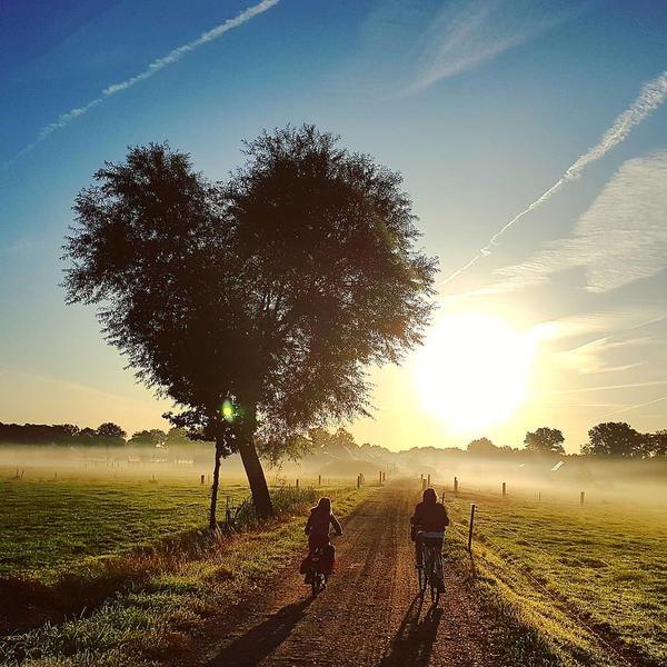 Camping zwischen Wiesen und Tieren in Drenthe #10