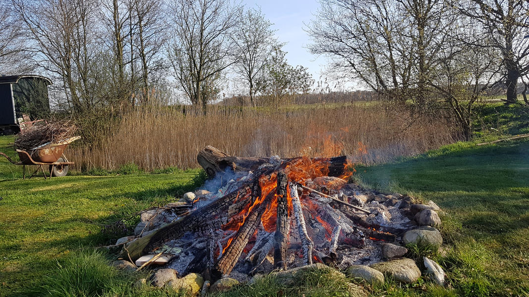 Camping between the meadows and animals in Drenthe #2