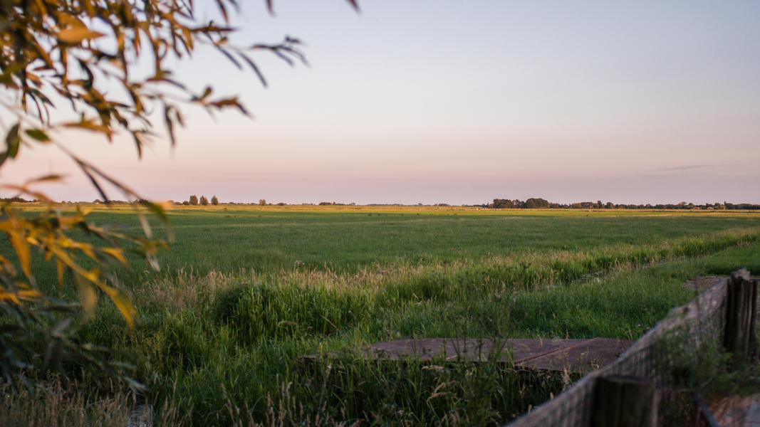 Jouw plek voor een nacht in de polder van 60 m2 #11