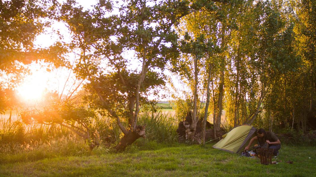 Jouw plek voor een nacht in de polder van 60 m2 #3