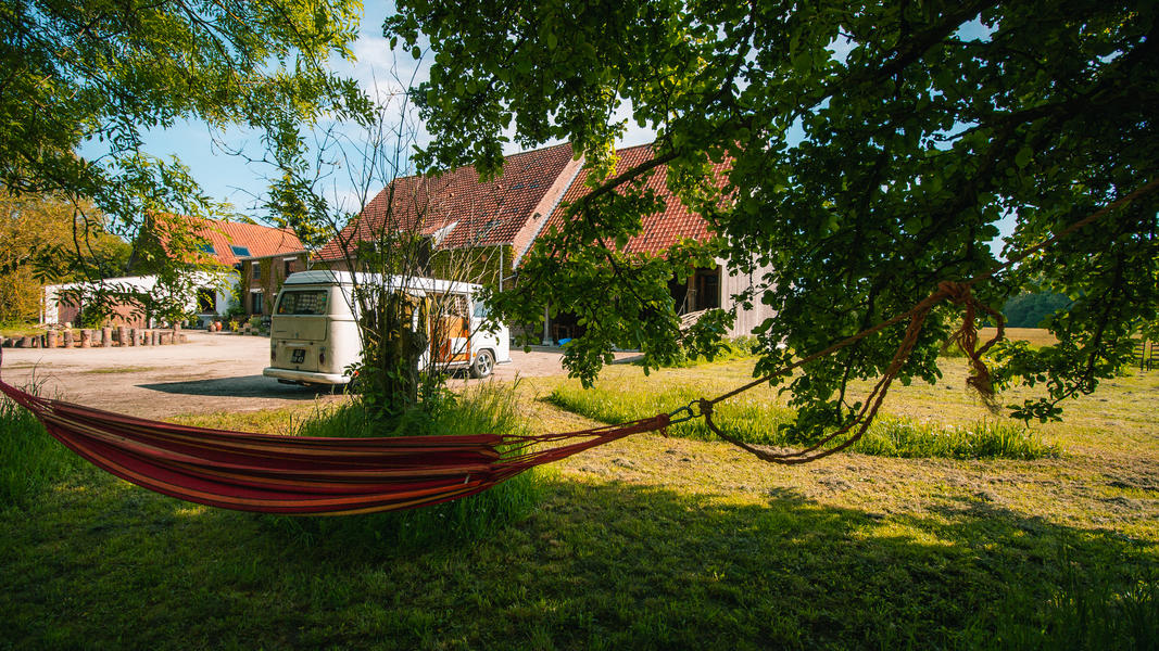 Natural, ecological and small-scale campsite by the forest. #10