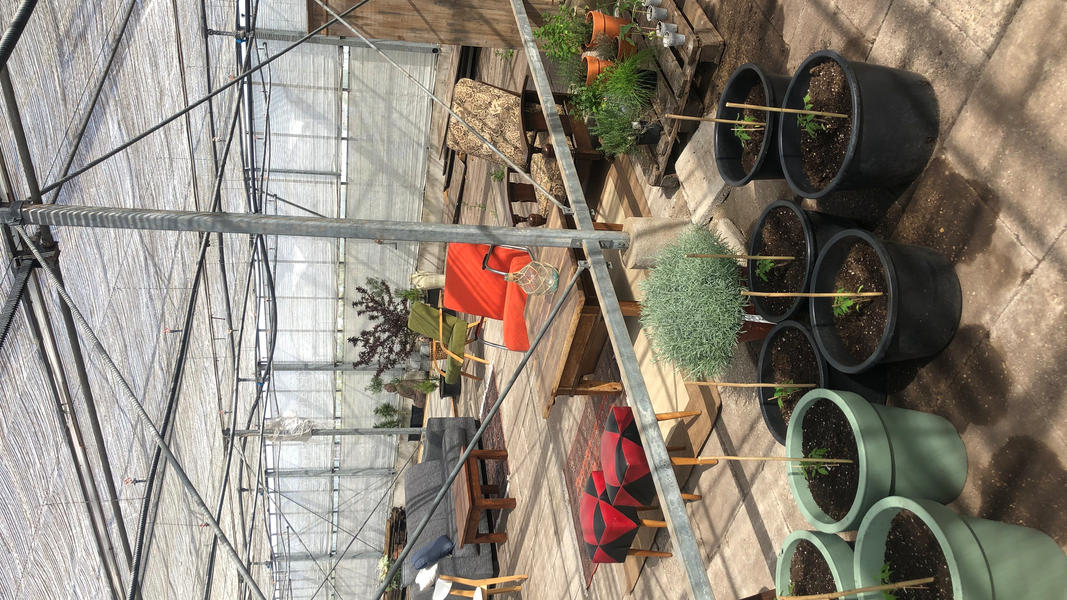 Put up your tent, sit back and relax at our plant nursery camping #20