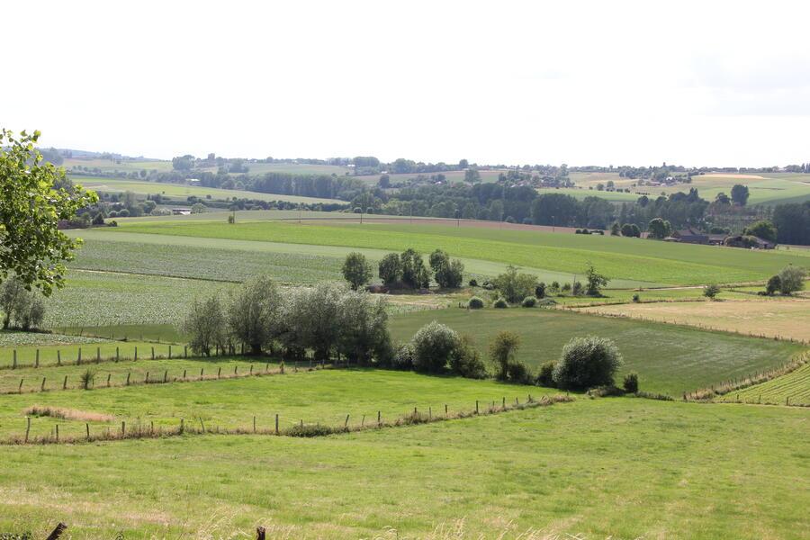 Heerlijk kamperen in hartje Vlaamse Ardennen #1
