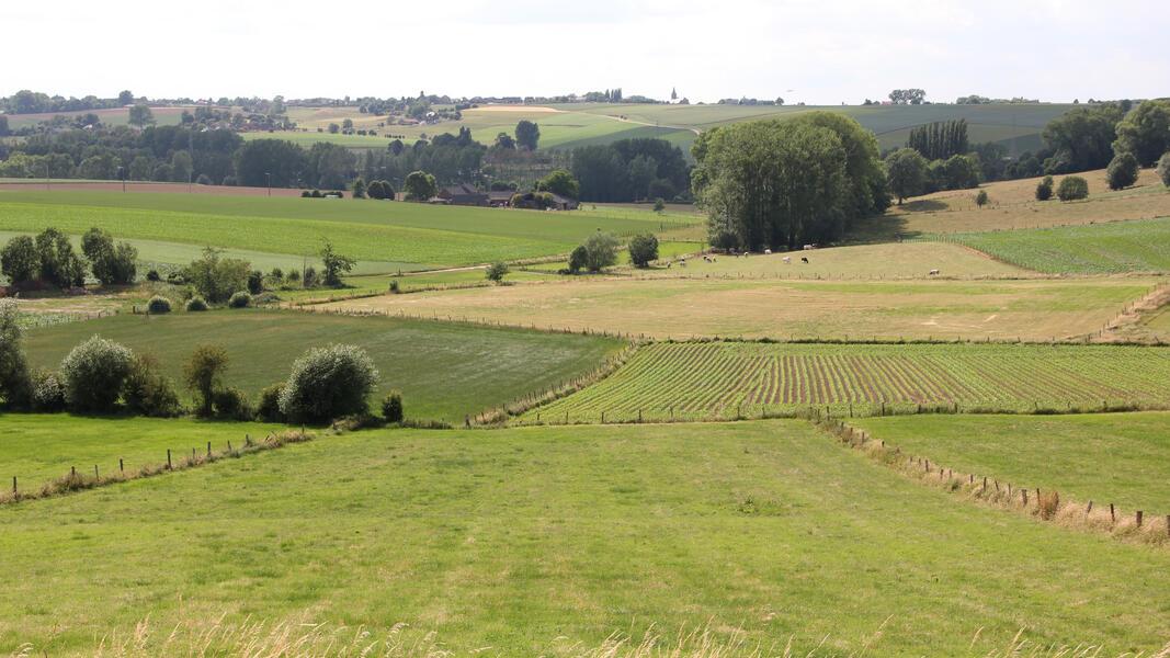 Heerlijk kamperen in hartje Vlaamse Ardennen #3